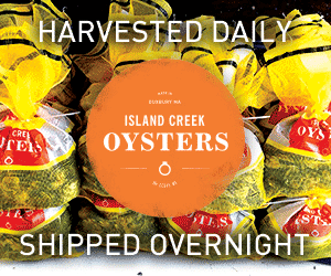 Island Creek Oysters, harvested daily