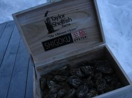 shigoku-016