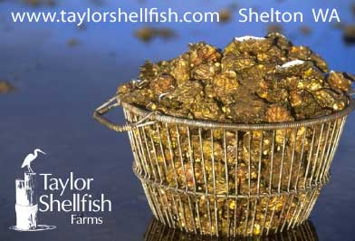Taylor Shellfish basket of oysters