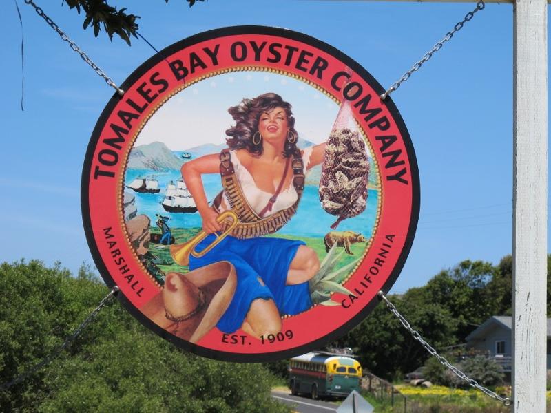 Tomales Bay 091 (800x600)