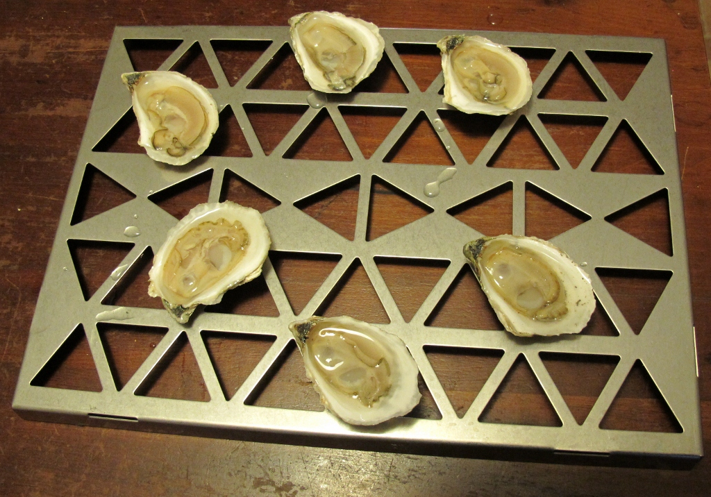 Nonesuch oysters (1024x716)