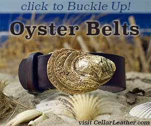 oyster-belts-buckle-up-300x250