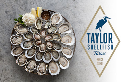 Taylor Shellfish Farms oysters