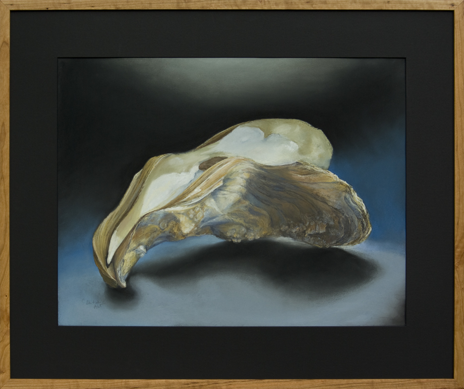 Oyster Shell - JA Clark Fancy, PEI -Framed, 26 x 32