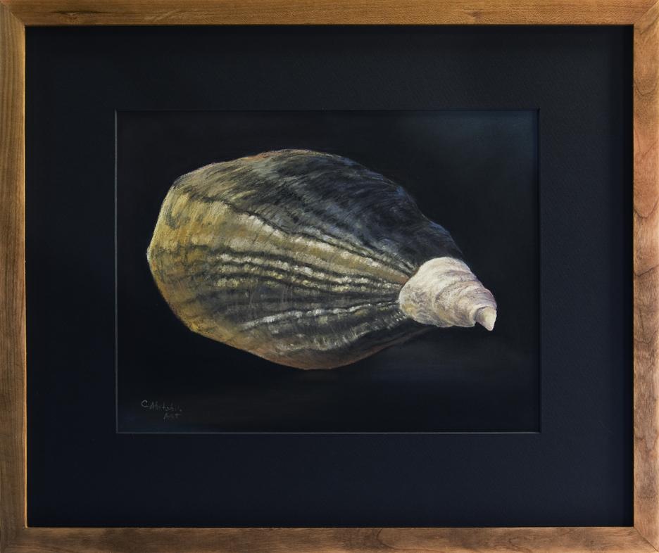 Oyster Shell - Precious, WA - Framed, 16 x 19