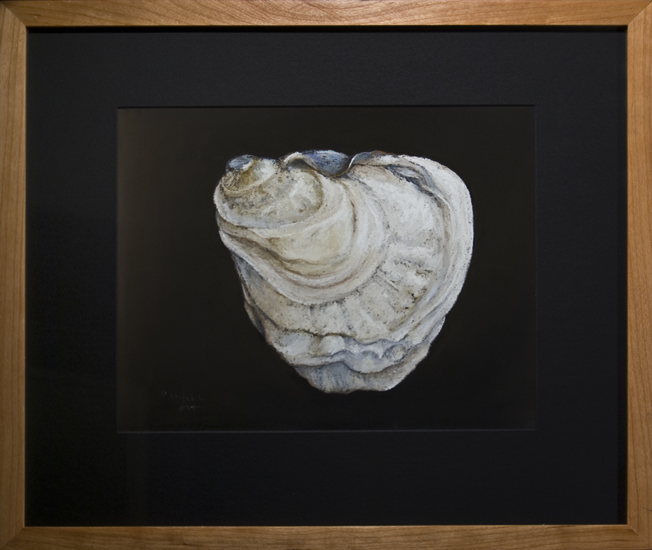 Oyster Shell - Raspberry Point, PEI -Framed, 16 x 19