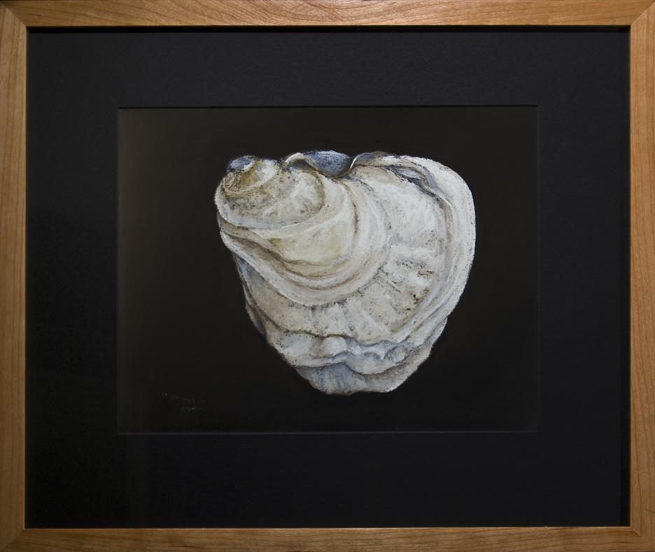 Oyster Shell - Raspberry Point, PEI -Framed, 16 x 19