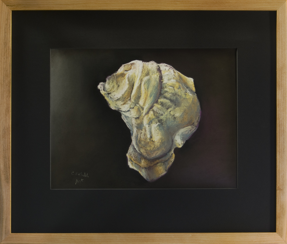 Oyster Shell - Westkeag River Aphrodite, ME - Framed, 16 x 19