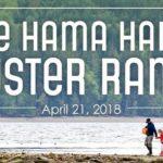 Hama Hama Oyster Rama